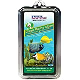 Ocean Nutrition Algae Seaweed Fish Food with Clip Inside (Green, 30 g)