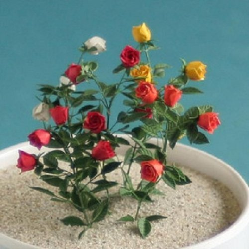 table-garden-series-1-12-rose-japan-import