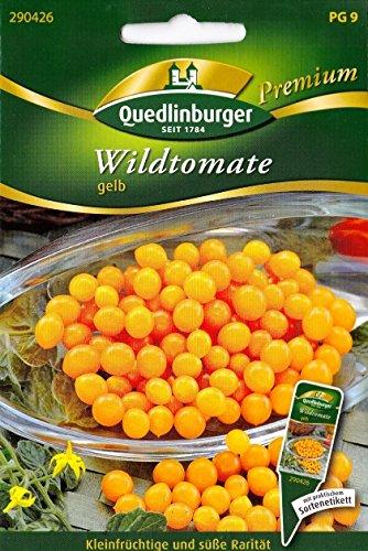 wildtomate-raritat-wilde-tomaten-lycopersicon-pimpinellifolium-ca-20-samen