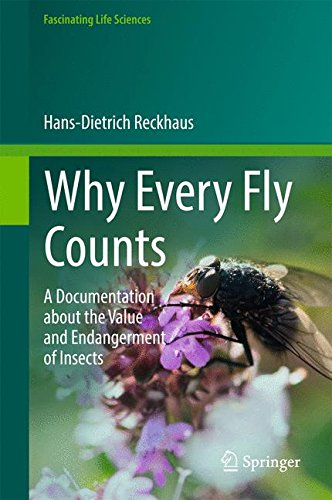 : A Documentation about the Value and Endangerment of Insects (Fascinating Life Sciences) ()