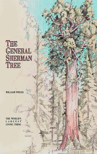 The General Sherman Tree (English Edition)