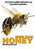 More Than Honey [UK kostenlos online stream
