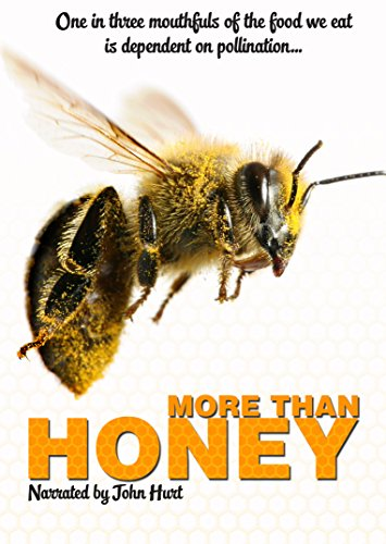 more-than-honey-dvd-edizione-regno-unito