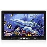 "Eyoyo 7"" Farb LCD 1000tvl Wasserdicht 50m Kabel Akku Fish"