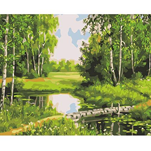 ZYCD Unterstützung Benutzerdefinierte DIY malen nach Zahlen handgemaltes ölgemälde Färbung nach Zahlen Poster Landschaft leinwand malerei auf leinwand schöne Holz (40*50cm/16*20inch)