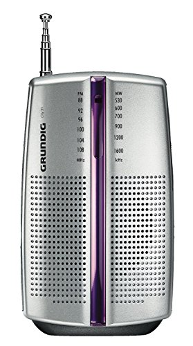 Grundig City BOY 31 PR3201 - Portable radio (2 x AAA, AM / FM), silver color