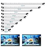 MLJ LED Aquarium Lighting for Fish Tank, Waterproof Amphibious Light White & Blue/RGB