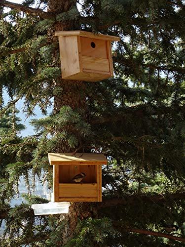 taille 40 lacer dans 50-70% de réduction Les meilleures mangeoires pour les oiseaux