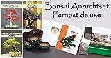 Seedeo Bonsai Anzuchtset Fernost deluxe (Roter Fächerahorn , Weißer Maulbeerbaum, Blauregen)