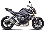 Auspuff IXRACE 2 für Suzuki GSX-S 750, 16-, GSR 750, 11-