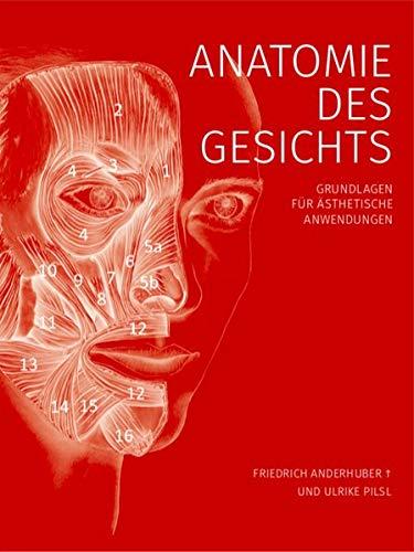 Anatomie des Gesichts: Grundlagen für ästhetische Anwendungen