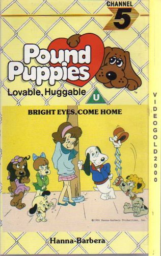 pound-puppies-bright-eyes-come-home