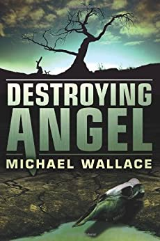 Destroying Angel (Righteous Series Book 5) (English Edition) par [Wallace, Michael]