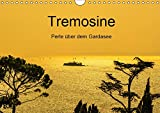 Tremosine - Perle über dem Gardasee (Wandkalender 2019 DIN A4 quer): Hochebene und Naturpark Alto Garda Brescione - ein