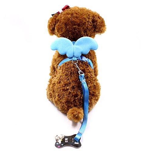 VI. Yo niedlich Angel Haustier Hund Halsbänder und Leinen Set für kleine Pet Designer Wing verstellbar, Nylon, blau, xs -