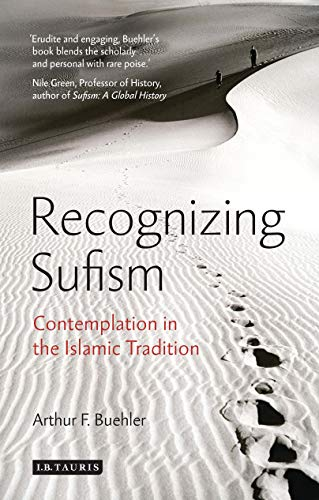 Recognizing Sufism: Contemplation in the Islamic Tradition (Library of Modern Religion)