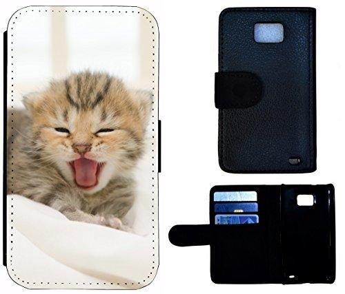 Flip Cover Schutz Hülle Handy Tasche Etui Case für (Apple iPhone 4 / 4s, 1419 Französische Bulldogge Welpe Hund) 1424 Katze Katzen Baby Grau Kätzchen