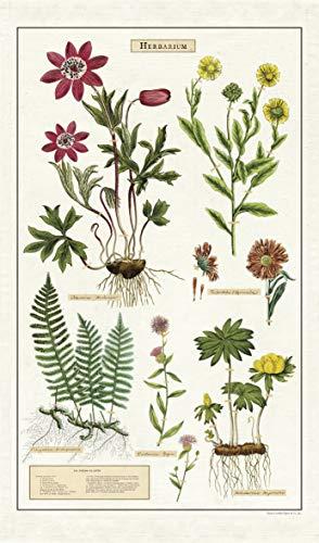 Cavallini Papers & Co. Geschirrtuch, Vintage Tea Towels, Herbarium, Kräuter, Küchenkräuter Vintage Tea Towel