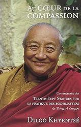 Au coeur de la compassion : Commentaire des Trente-Sept Stances sur la pratique des bodhisattvas