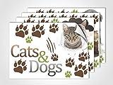 GRAZDesign 411029_4 Fenstersticker Cats & Dogs | Fensterbild für Dein Kinderzimmer | Glasdekor für Fenster (DIN A4 (4Stück))