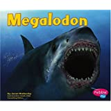 Megalodon (Dinosaurs and Prehistoric Animals)