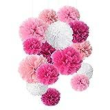 Carta velina pom pom Paper Flower Ball decorazione per festa e celebrazione–15pz da 8, 10, 35,6cm