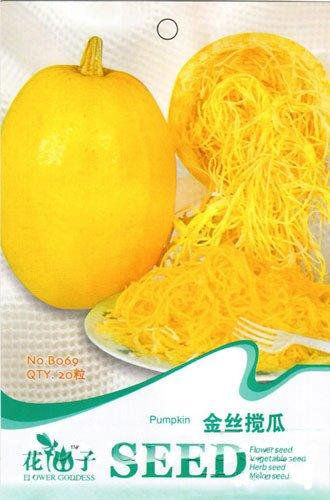 calabaza-de-espagueti-de-la-herencia-natural-organica-de-los-tallarines-vegetable-seeds-paquete-orig