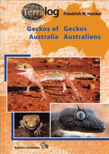 geckos-australiens