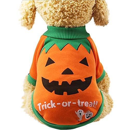 Smniao Hundekleidung Halloween Pumpkin Cosplay Shirts Warm Haustier Kostüm Trick or Treat Muster Sweatshirt für Kleine Hunde Chihuahua (M, - Best Trick Or Treat Kostüm