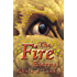 4: The Fire Eternal (The Last Dragon Chronicles)