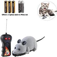 Zeokone - Radiocontrol con forma de ratón para jugar con el gato - Color gris - Incluye 5 pilas
