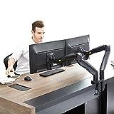 NB North Bayou Support de Moniteur Support pour écran PC sur Bureau Design Ergonomique Ressort à gaz avec Port USB (Noir, 22-32' Deux Bras)