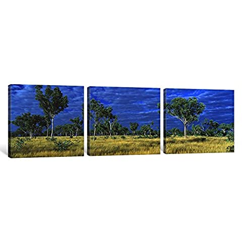 iCanvasART 3-Piece Savannah Bungle Bungle Australia Canvas Print by Panoramic Images, 1.5 by 48 by 16-Inch