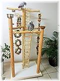 Kletterbaum für Vögel, FREISITZ Deluxe ROTBUCHENHOLZ, Papageienspielzeug, mit Leiter Zum Boden, 165 cm