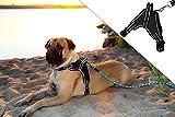 Molosser Hundegeschirr für Kleine Mittelgroße Große Hunde und Welpen, Reflektierend Brustgeschirr Sicherheitsgeschirr Hund ausbruchsicher gefüttert, Gr. XXL