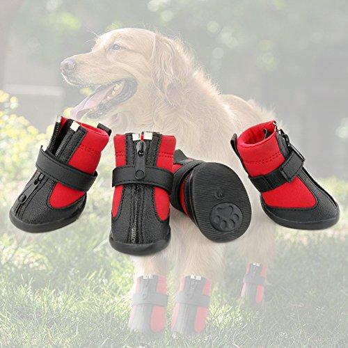 Grand Line Botas de Perro Impermeable Tamaño M Pata Protector con Resistente al Desgaste Suela Antideslizante Conjunto de 4