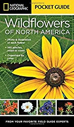 National Geographic Pocket Guide to Wildflowers of North America (National Geographic Pocket Gde)