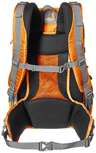 AmazonBasics - Kamera-Rucksack, Wander-Ausrüstung, Orange Orange