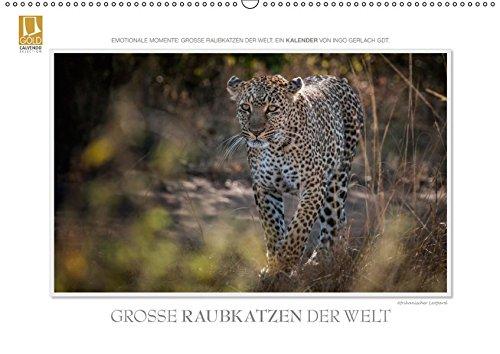 Große Raubkatzen der Welt.CH-Version (Wandkalender 2019 DIN A2 quer): Ob Tiger, Leopard oder Löwe - die große Raubkatzen der Welt ... (Monatskalender, 14 Seiten ) (CALVENDO Tiere) ()