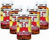 Estimulante de la testosterona natural 5 paquetes NEW TESTO X ZMA 100 cps - 70 gr   aumentar la masa muscular   Reducen la fatiga   mejorar el sueño   mantener los niveles de testosterona   promover la síntesis de proteínas   aumento de la fuerza   formulación con: De saponinas protodioscin Tribulus terrestris (alta%) - Avena Sativa - heno griego - Dioscorrea - cinc - magnesio - Vitamina B6
