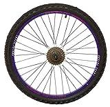 Firecloud Cycles Arrière Dunlop 26 ' Vélo Vtt Roue Violet Jante Moyeu Disque Inc 6spd Rainure Blk Rayons Pneu