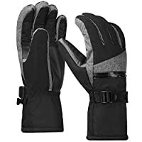 Terra Hiker Waterproof Ski Gloves Mens, Thermal Thinsulate Gloves for Skiing, Snowboarding, Cycling and Other Winter Sport Activities (Dark Gray, M)