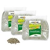 versando Rasendünger 30 Kg für bis zu 1000m² sattgrünen Rasen