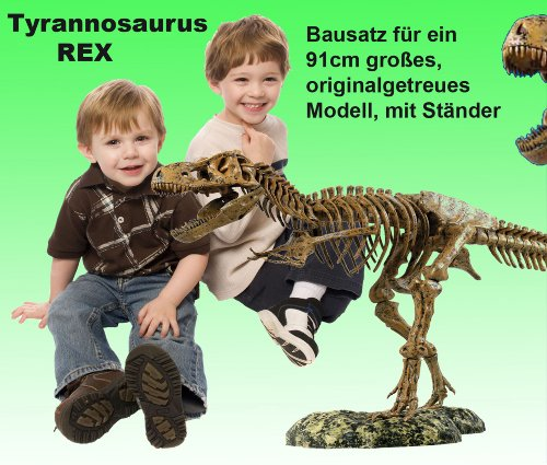 XL Tyrannosaurus Rex Skelett 91cm -