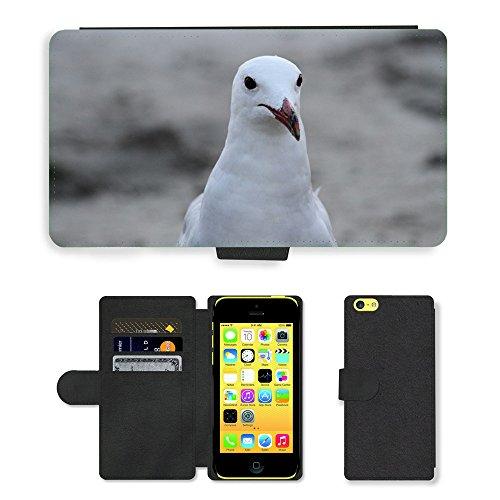 Just Mobile pour Hot Style Téléphone portable étui portefeuille en cuir PU avec fente pour carte//m00139364Mouette mer ave Bird Animal Portrait//Apple iPhone 5C