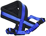 Trixie 20402 Premium Geschirr, M-L: 50-80 cm/25 mm, blau