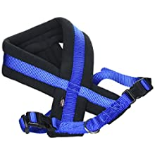 Trixie Premium Harness with Fleece Padding, S to M, 40-60 cm x 20 mm, Blue