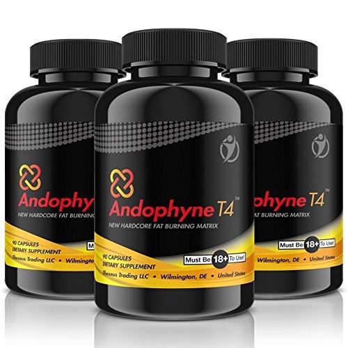 *ANDOPHYNE-T4 | 90 Kapseln für 30 Tage Anwendung | THERMO-EFFEKT | Natürliche Unterstützung für die Gewichtsreduktion für Männer und Frauen, effektiv und schnell abnehmen | Premium Qualität*