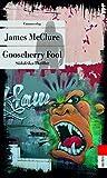 Image of Gooseberry Fool: Südafrika-Thriller (metro) (Kramer & Zondi ermitteln)