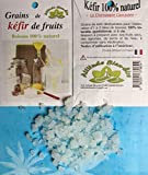 Grains de Kéfir de fruits